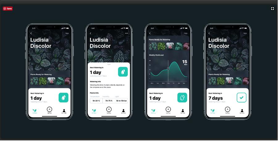 camelo-digital-desenvolvimento-de-app