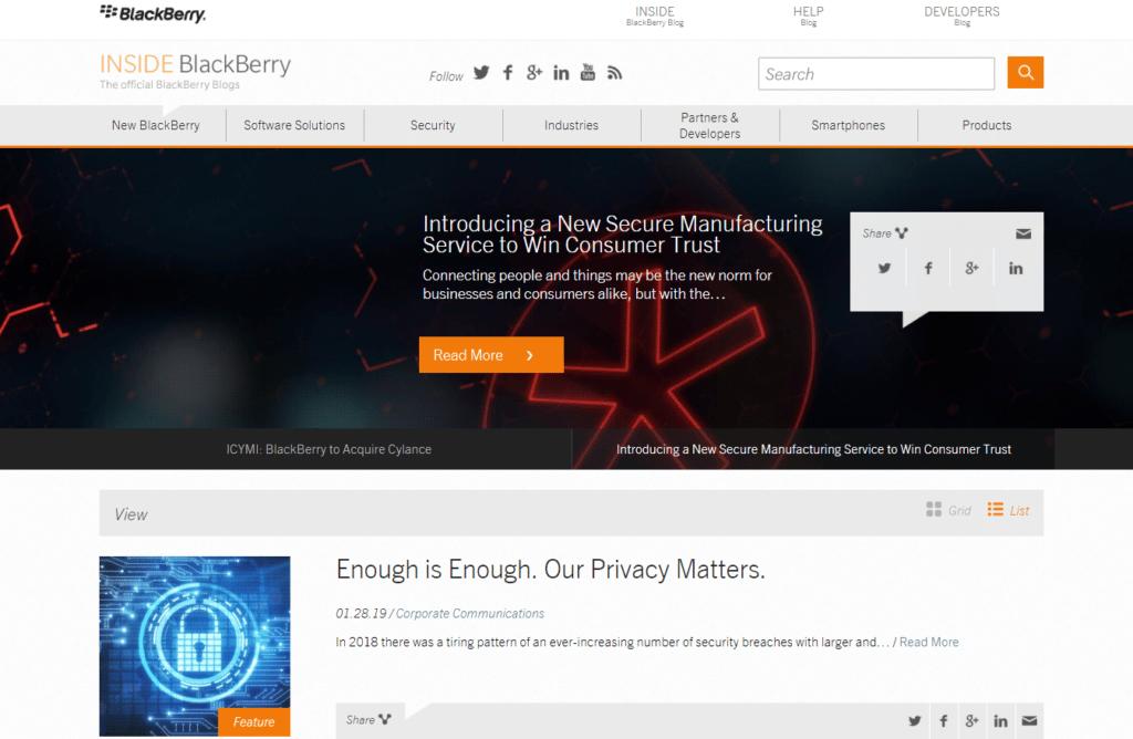 desenvolvimento-de-site-wordpress-black-berry-camelo-digital